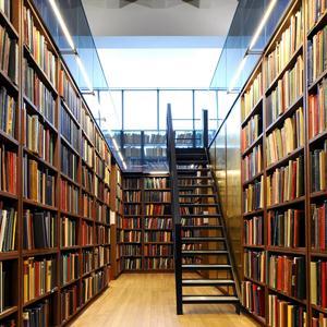 Библиотеки Гусева